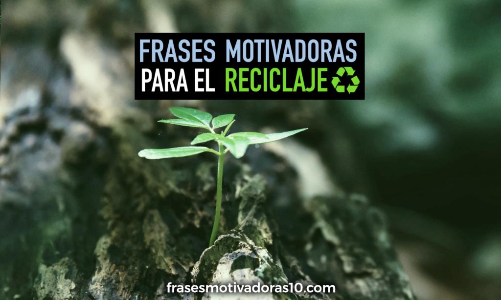 Frases Motivadoras Para Reciclar Frases Motivadoras 10