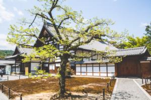 frases-filosofia-japonesa